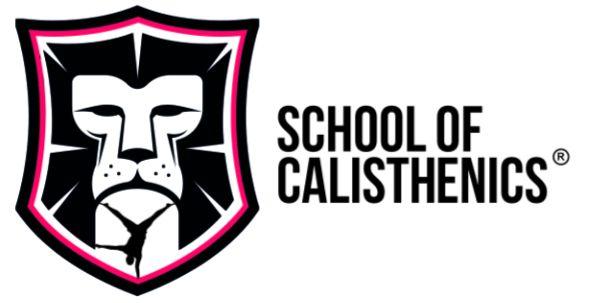 schoolofcalisthenics.com